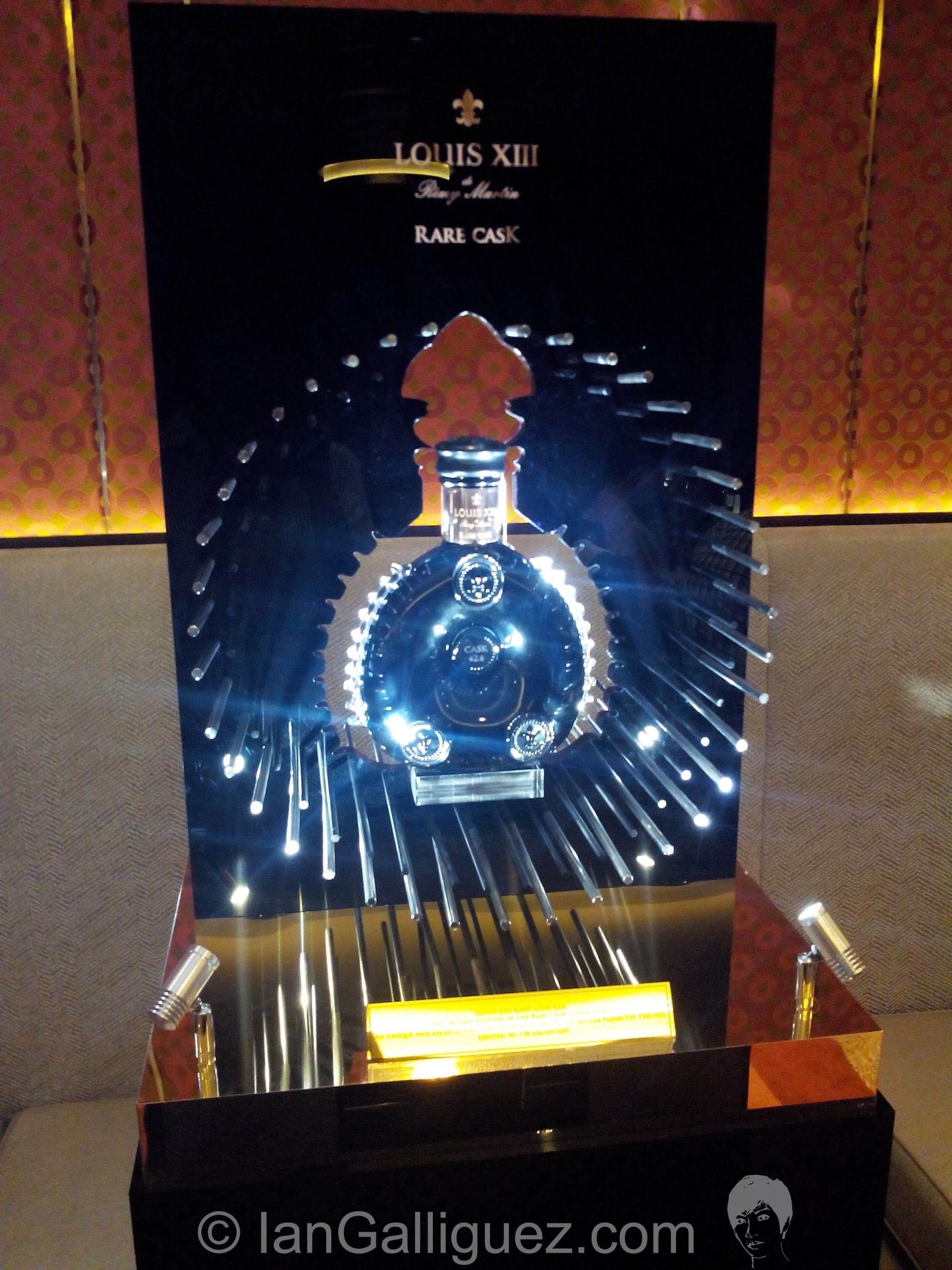 Louis xiii quest for a legend (28)